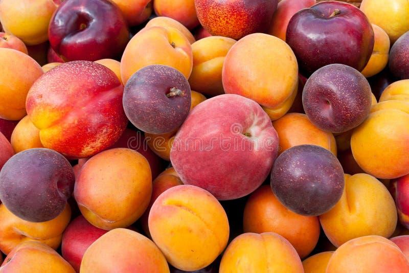 färgrik fruktstapel royaltyfri foto