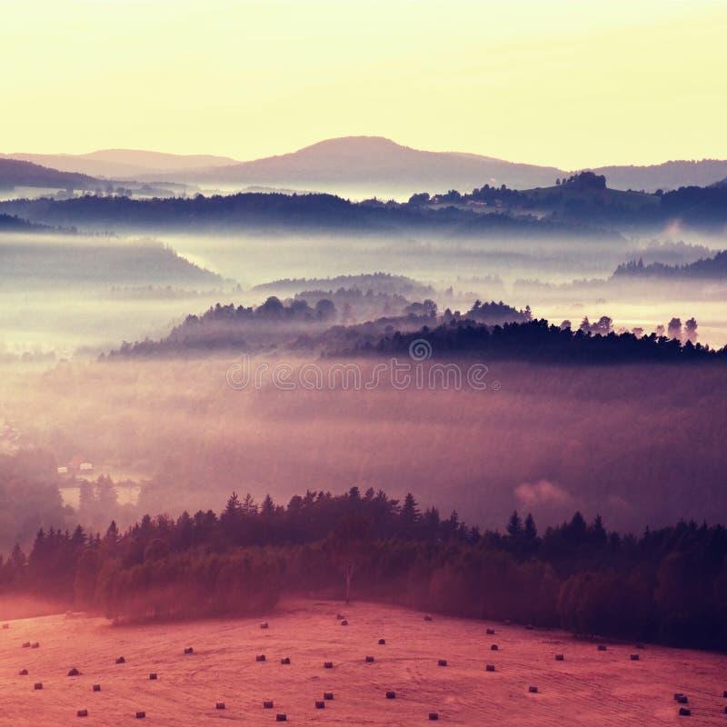 Färgrik frysningnedgång Dimmigt landskap för höstbergkullar Filtrerad bild med kors bearbetad livlig effekt royaltyfria bilder