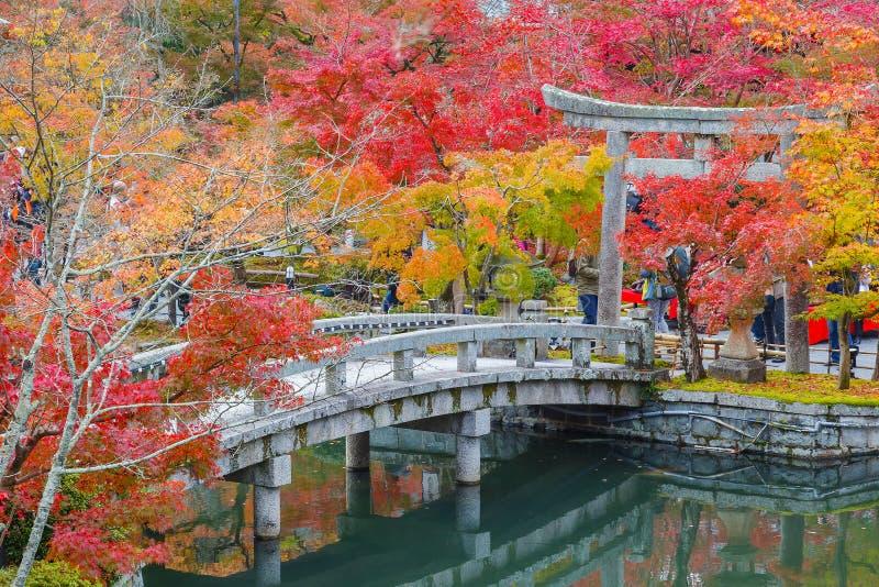 Färgrik höst på den Eikando Zenrinji templet i Kyoto royaltyfri fotografi