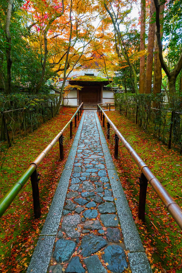 Färgrik höst på Koto-i templet i Kyoto arkivbilder