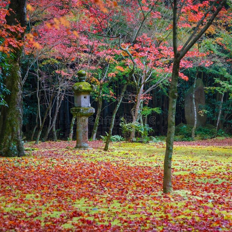 Färgrik höst på Koto-i templet i Kyoto royaltyfri fotografi