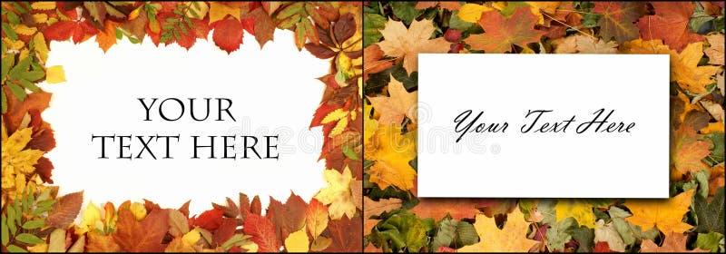 färgrik höstbakgrund fallna leaves Ställ in collage vektor illustrationer