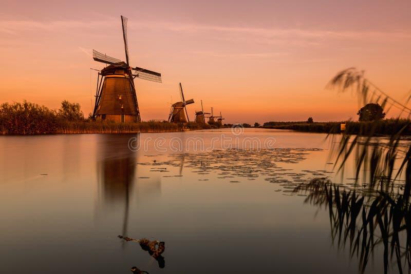 Färgrik höstplats i de berömda Kinderdijk kanalerna med windm royaltyfria foton