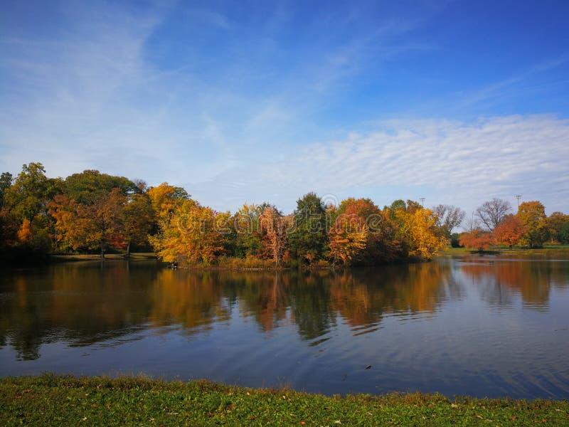Färgrik höstskog reflekterad i den lugna sjön med härliga vita moln i ljus blå himmel royaltyfri fotografi