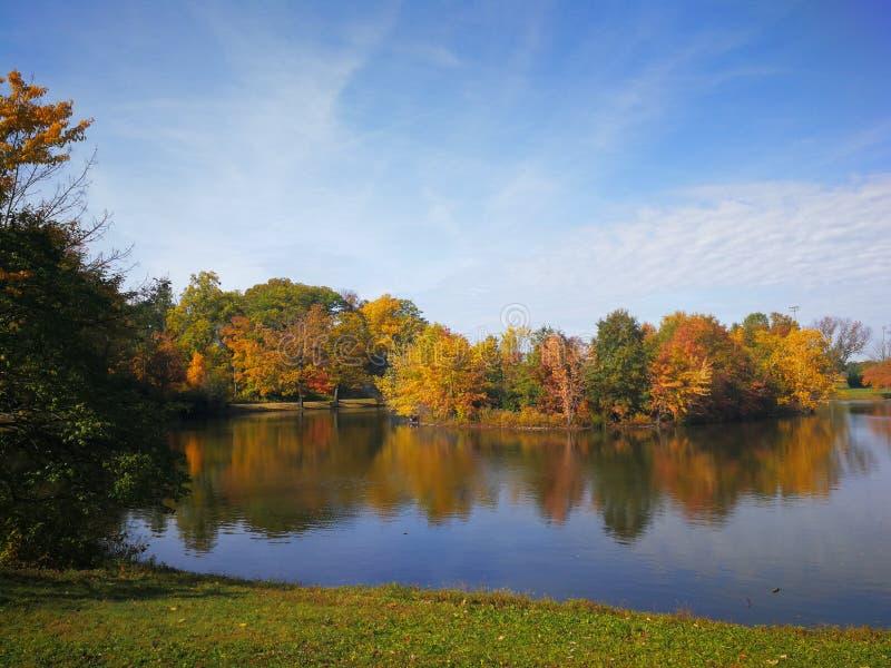 Färgrik höstskog reflekterad i den lugna sjön med härliga vita moln i ljus blå himmel arkivfoto
