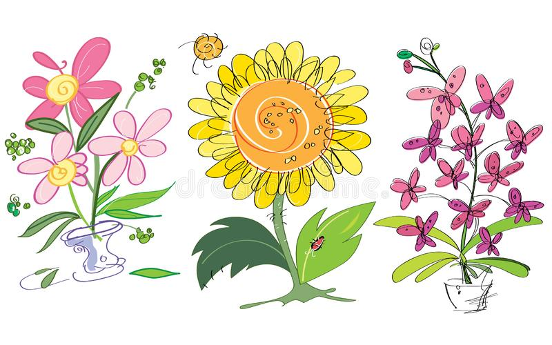 Färgrik idérik solros för vektor, orkidér och rosa blommor Passande f?r h?lsningkort vektor illustrationer