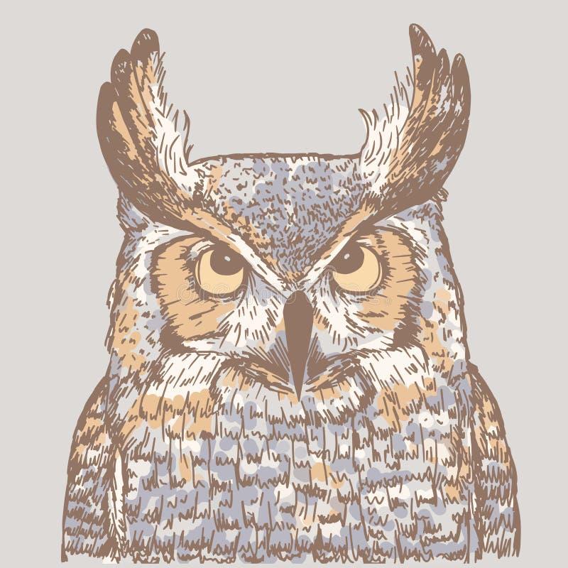Färgrik illustration av ugglan på grå bakgrund Realistisk teckning av fågeln vektor illustrationer