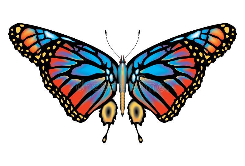 färgrik isolerad monark för fjäril stock illustrationer