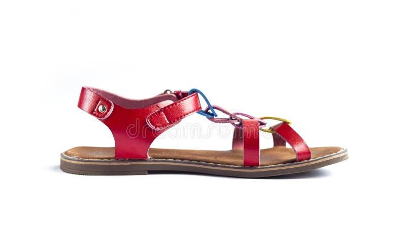 Färgrik kvinnlig sandal på vit bakgrund arkivfoto