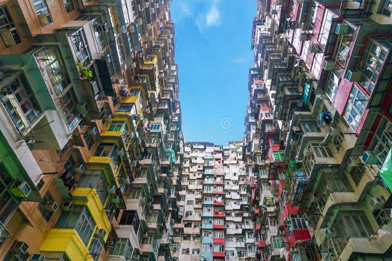Färgrik lägenhet i det villebrådfjärdHong Kong porslinet arkivfoto