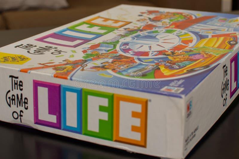 Färgrik lek av livasken royaltyfria foton