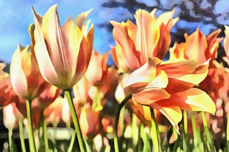Färgrik målning för härliga blommor på den Keukenhof blommaträdgården royaltyfri illustrationer