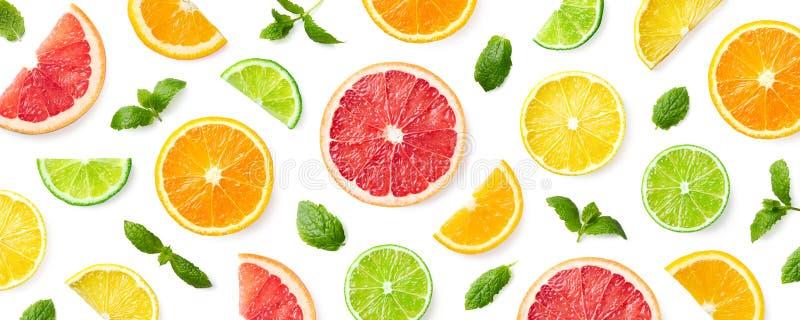 Färgrik modell av citrusfruktskivor och mintkaramellsidor royaltyfri foto