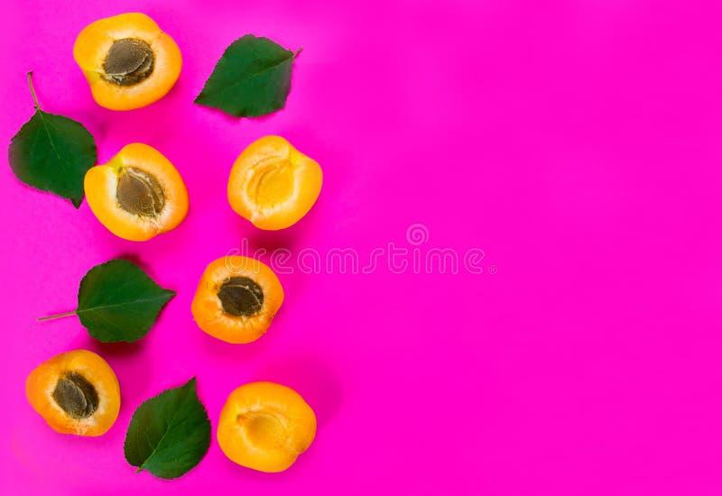 Färgrik modellbakgrund av den nya aprikons på en ljus rosa bakgrund kopiera avst?nd arkivfoto