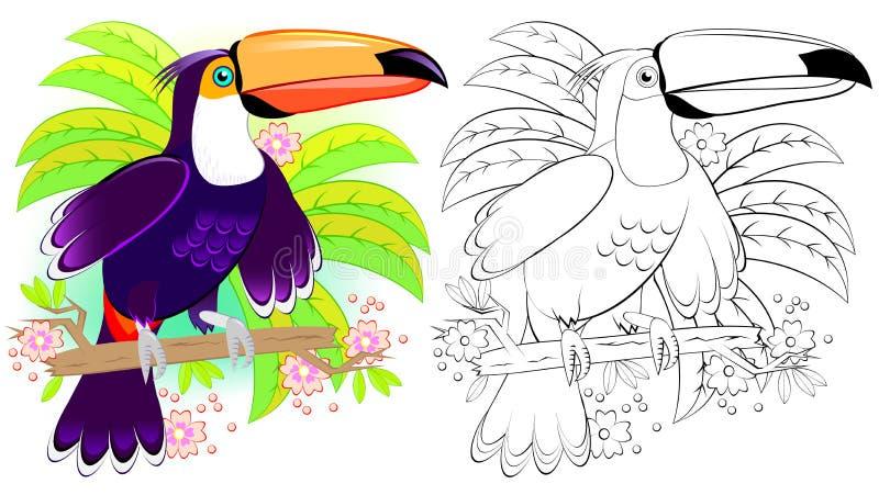 Färgrik och svartvit modell för att färga Illustration av den gulliga tukan Arbetssedel för barn och vuxna människor vektor illustrationer