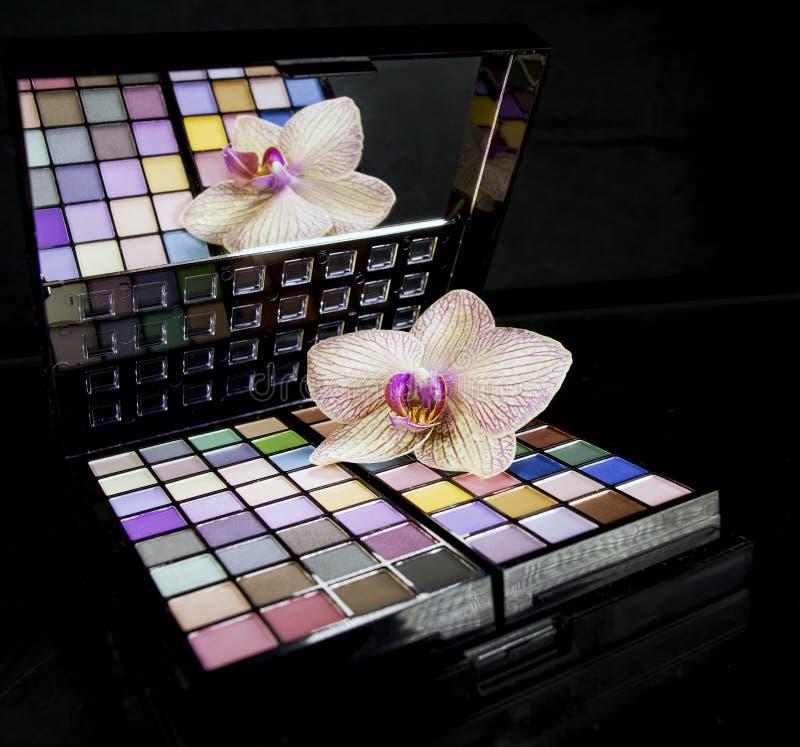 Färgrik palett för ögonskuggor royaltyfria foton