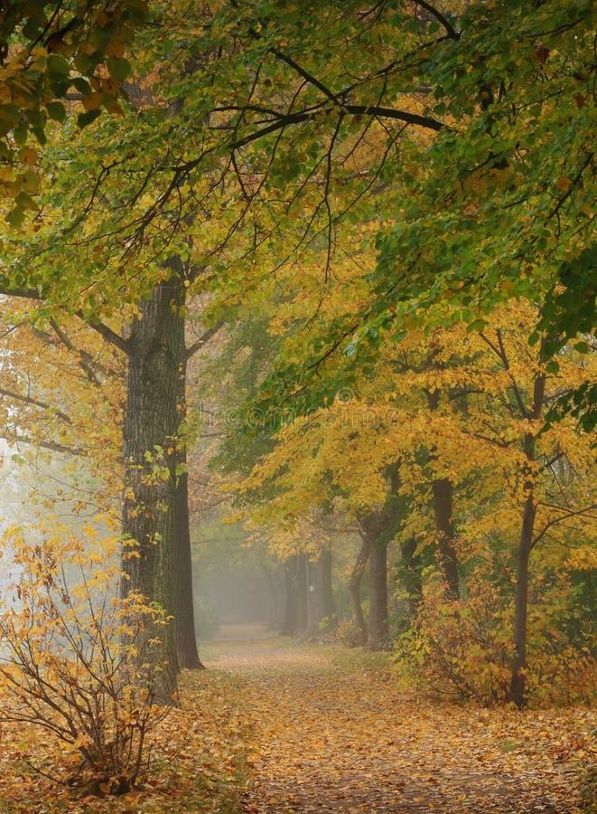 färgrik park för gränd royaltyfria foton