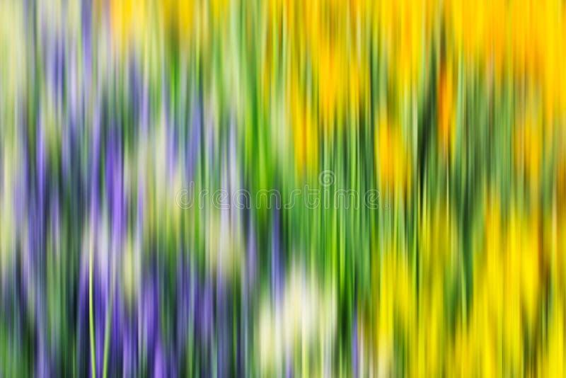 Färgrik psykedelisk utsmyckad bakgrund royaltyfri illustrationer