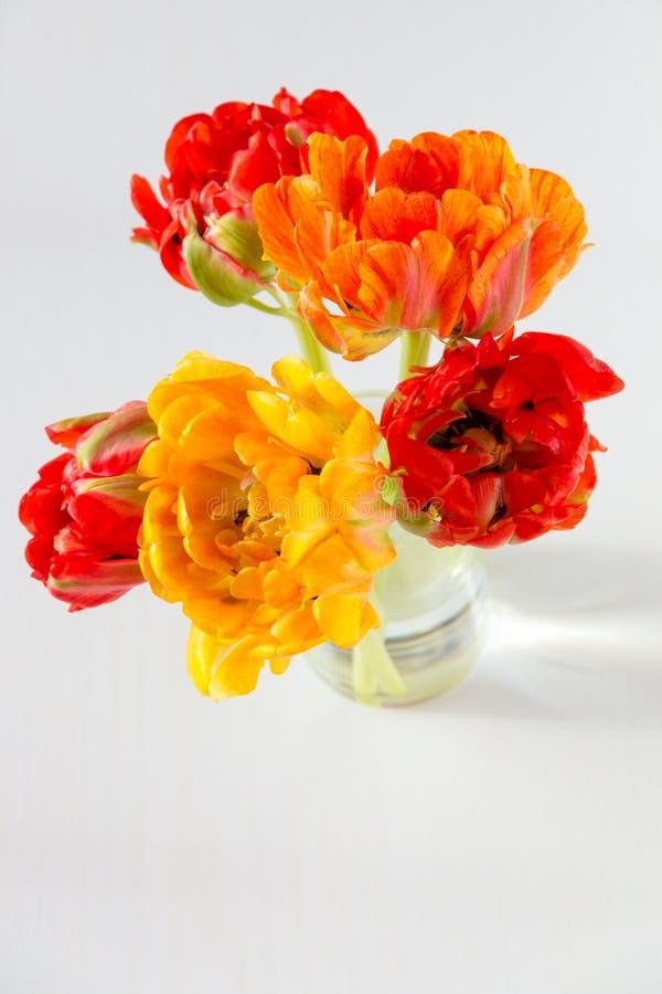 Färgrik röd och gul tulpanbukett i vas på tabellen arkivbild
