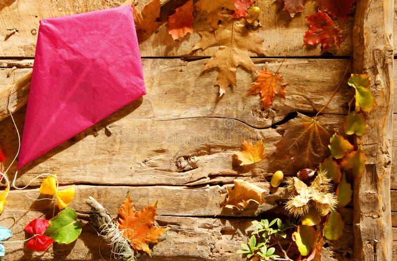 Färgrik rosa färgpappersdrake i en höstgräns royaltyfri fotografi