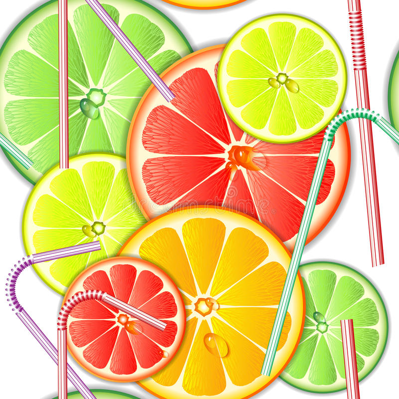 Färgrik seamless modellcitrusfrukt stock illustrationer