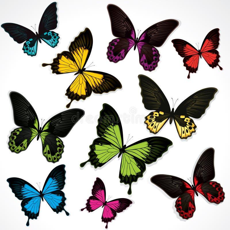 färgrik set för fjärilar stock illustrationer