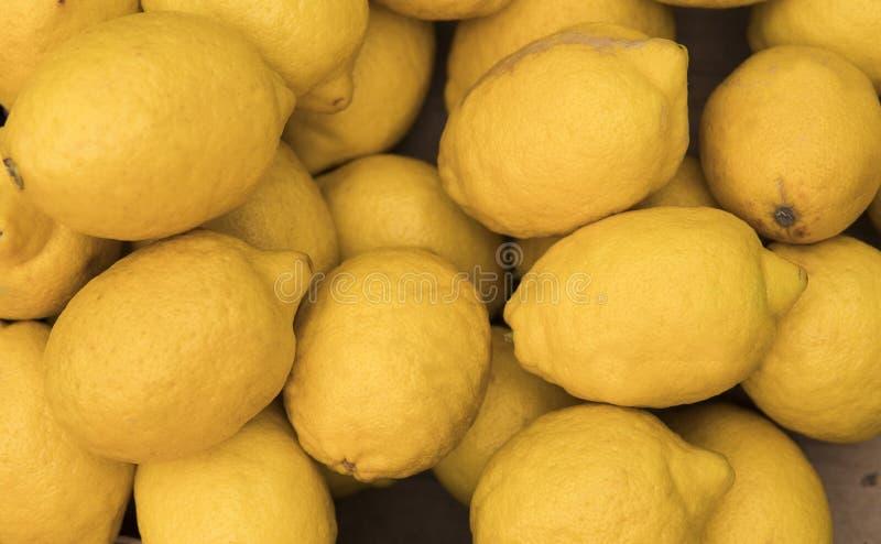 Färgrik skärm av citroner i en korg på den bio marknaden eller livsmedelsbutiken Organiskt nytt citronbakgrundsslut upp arkivfoto