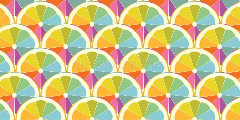 Färgrik skiva av apelsinen eller citronen arkivfoton