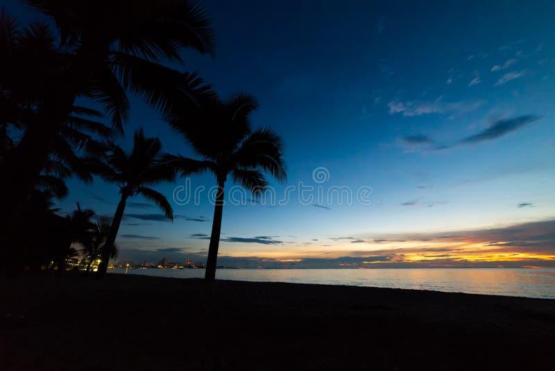 Färgrik solnedgång med kokosnötpalmträdkonturer fotografering för bildbyråer