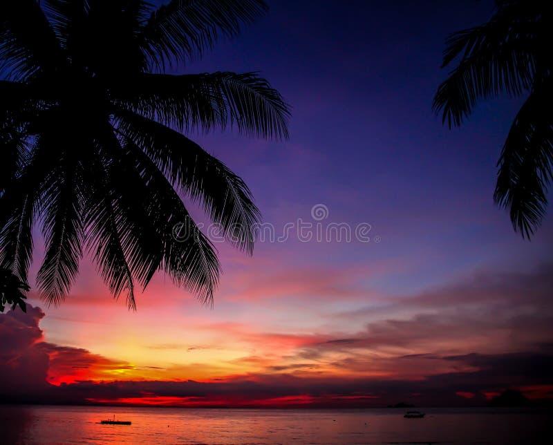 Färgrik solnedgång med palmträdet kontur-Malaysia arkivfoto