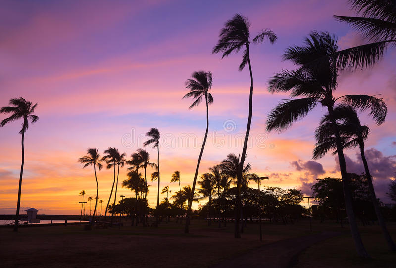 Färgrik solnedgång på den Waikiki stranden i Hawaii, USA arkivbild