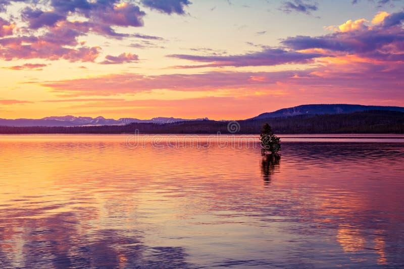 Färgrik soluppgång på sjön royaltyfri bild