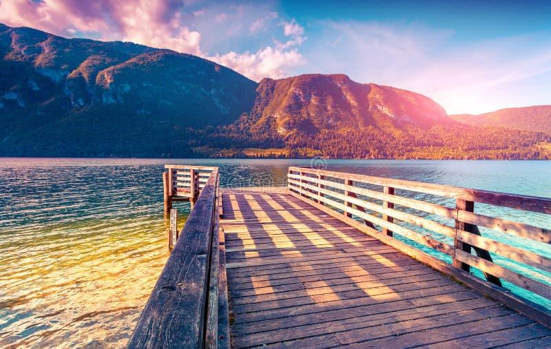 Färgrik sommarmorgon på Bohinj sjön royaltyfri foto