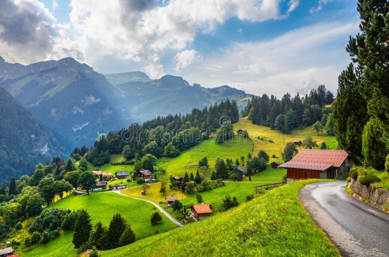Färgrik sommarsikt av den Wengen byn arkivbilder