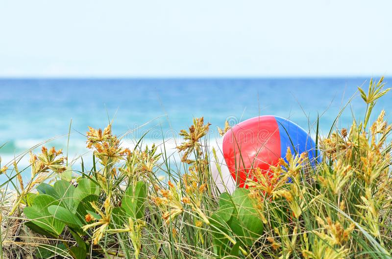 Färgrik strandboll för bakgrund i gräs för sanddyn av havet royaltyfri bild
