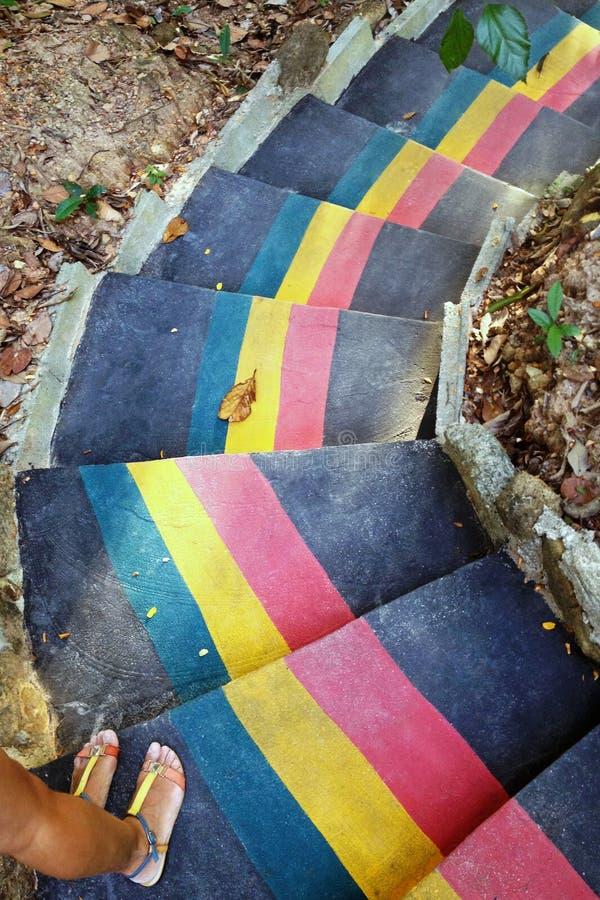 Färgrik trappa i djungel och två fot av kvinnan i sandaler, bästa sikt royaltyfri foto