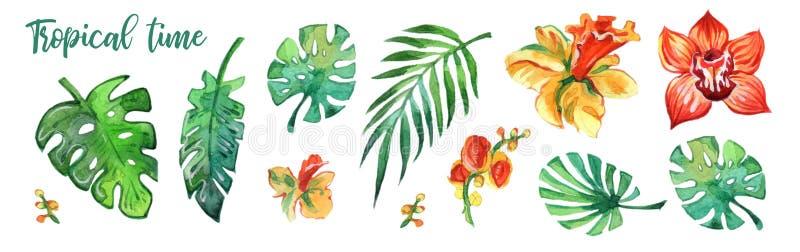 Färgrik tropisk sida- och blommaakvarell på vit bakgrund Akvarelltryck enkla modeller för illustrationer för garneringdesigneleme stock illustrationer