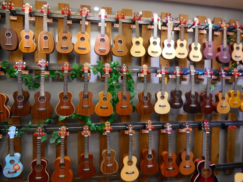 Färgrik ukulele och gitarr royaltyfri foto