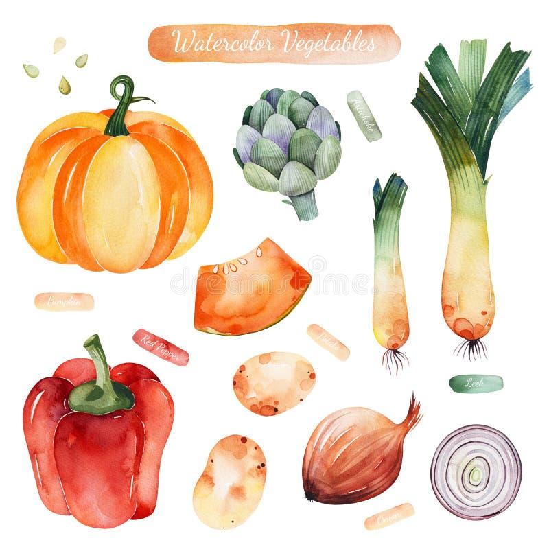 Färgrik uppsättning med pumpa, lök, röd peppar, potatisar, kronärtskocka, purjolök stock illustrationer