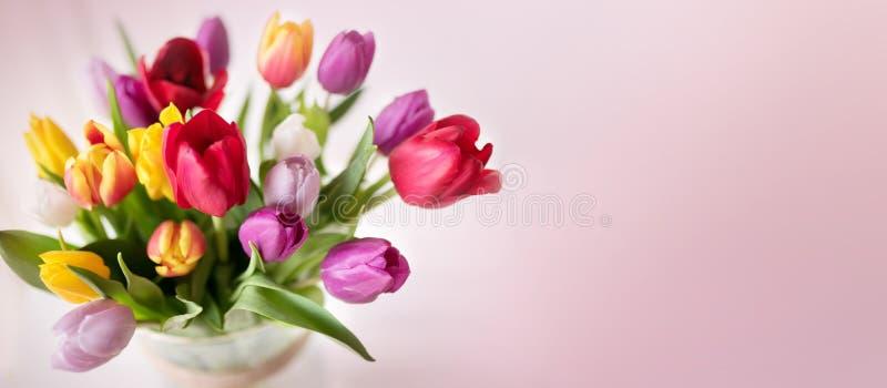 Färgrik vårbukett med tulpan fotografering för bildbyråer