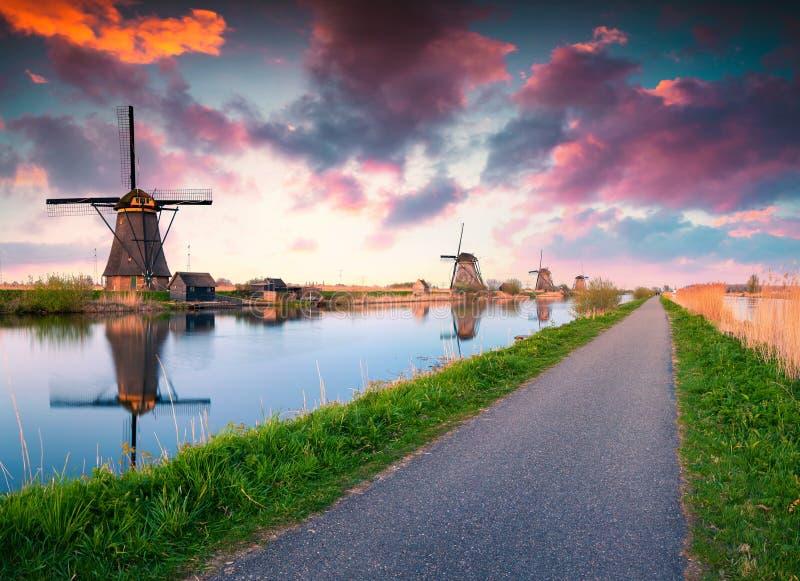Färgrik vårplats i de berömda Kinderdijk kanalerna med windm royaltyfri foto