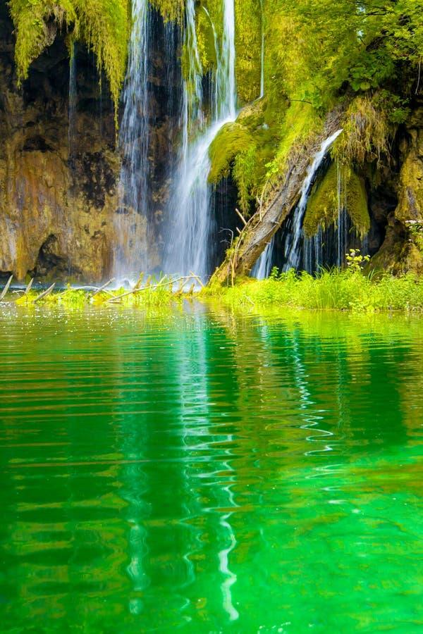 Färgrik vårvattenfall royaltyfria foton