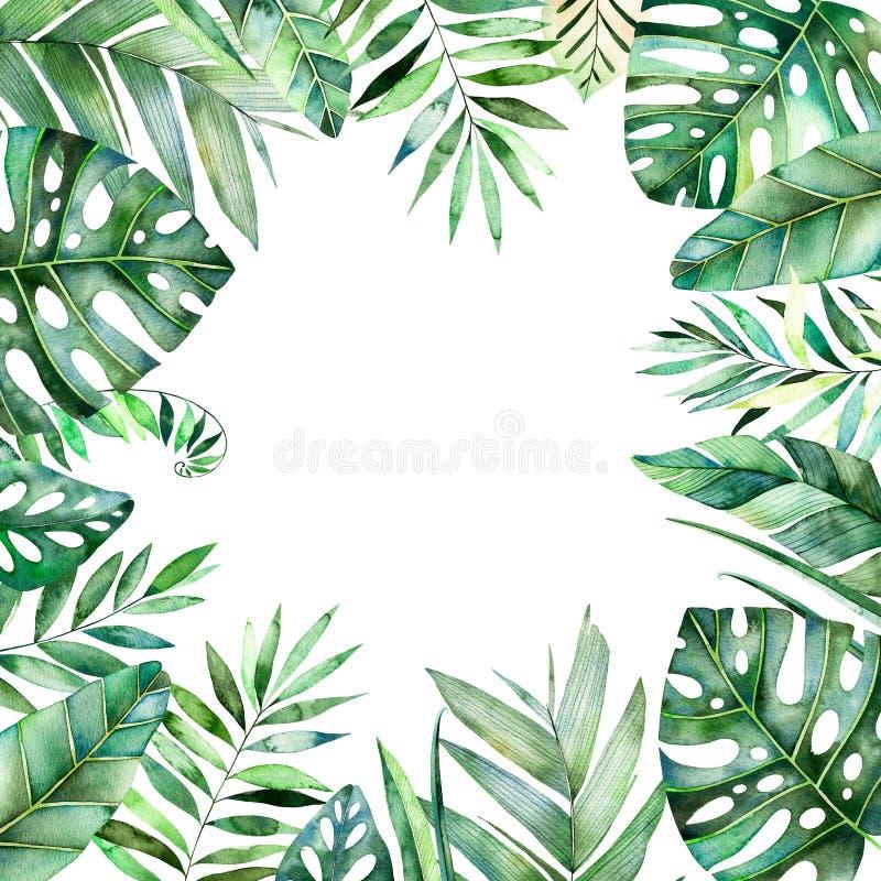Färgrik vattenfärgramgräns med färgrika tropiska sidor royaltyfri illustrationer