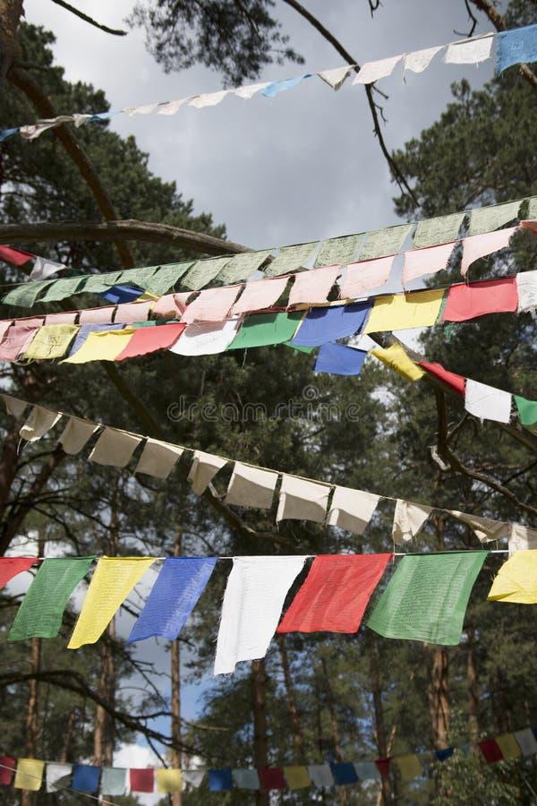 Färgrika bönflaggor, heliga traditionella flaggor av buddistisk filosofi royaltyfri fotografi