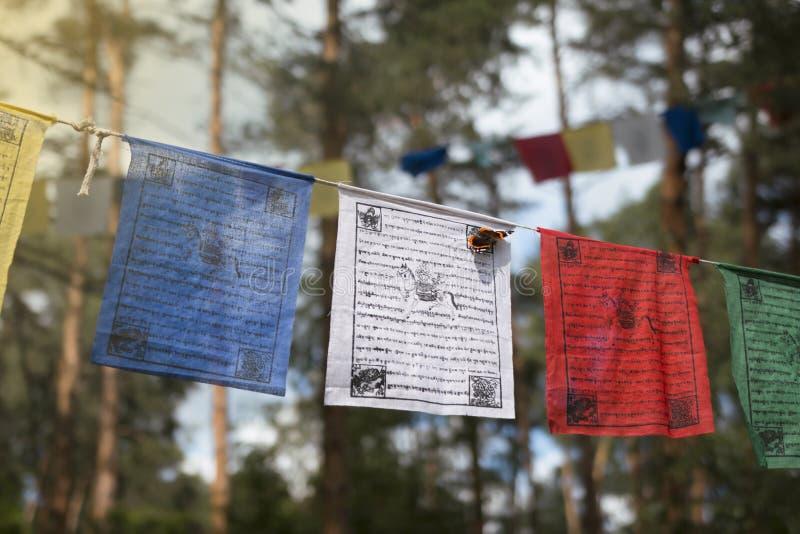 Färgrika bönflaggor lungta/darcho av buddistisk filosofi arkivfoton