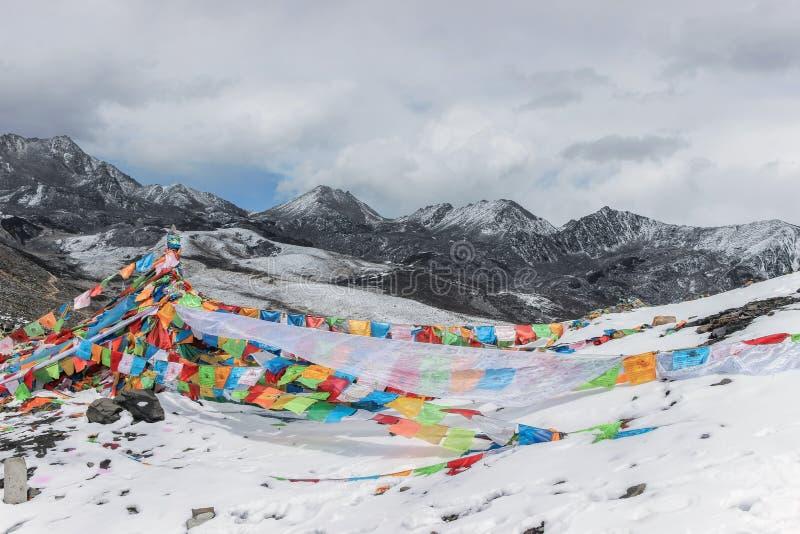 Färgrika bönflaggor på snöberget arkivfoton