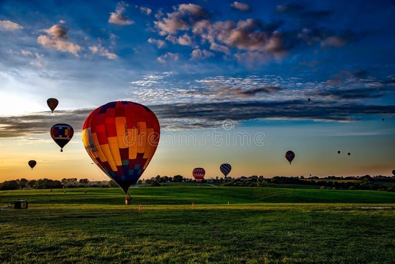 Färgrika ballonger för varm luft i fält på solnedgången royaltyfria bilder