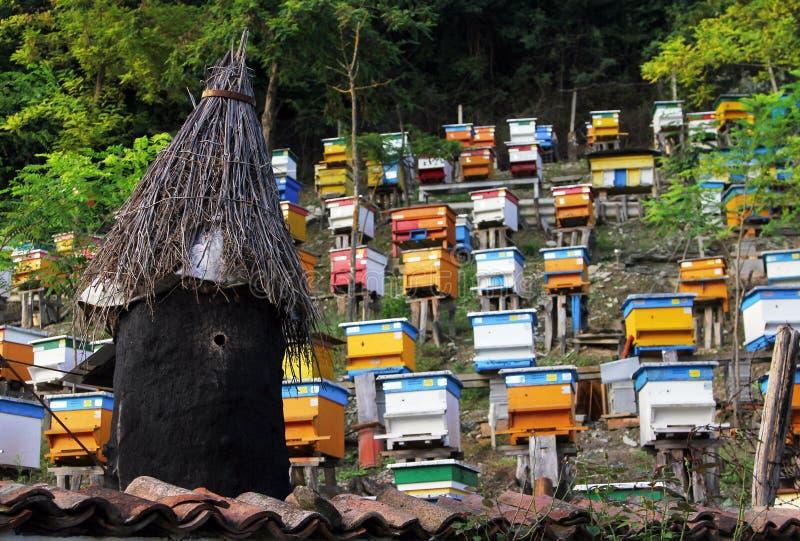 Färgrika bikupor av den bulgariska bikupa- eller bigården arkivbilder