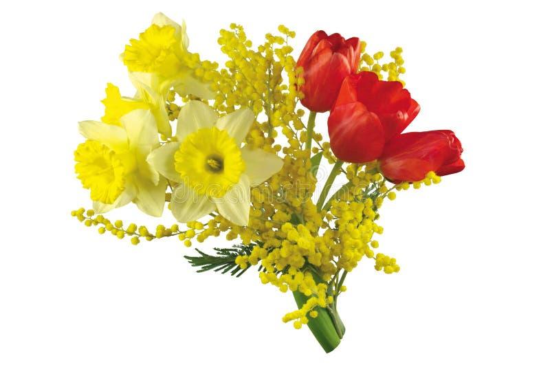 färgrika blommor för bukett royaltyfri bild