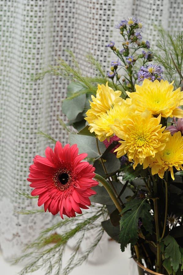 Download Färgrika Blommor För Bukett Fotografering för Bildbyråer - Bild av fjäder, vitt: 78726951